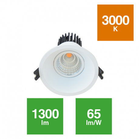 Downlight Spot Acentuación COB 20W