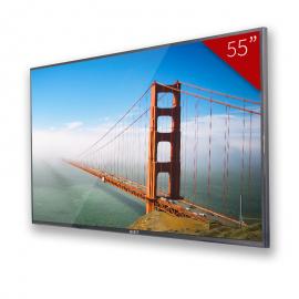 """Pantalla LCD 55"""" IP65"""